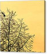 Two Birds In A Tree Canvas Print