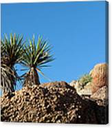 Two Bunch Gold Butte Canvas Print
