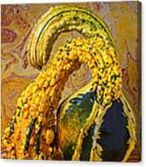 Two Gourds Canvas Print