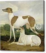 Two Greyhounds In A Landscape Canvas Print