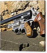Two Hand Guns Canvas Print