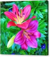Two Lily Flowers Canvas Print