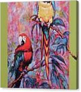 Captive Birds Of The Rain Forest Canvas Print