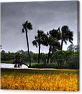 Two Mile Palms Canvas Print