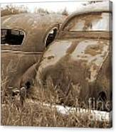 Two Old Rear Ends-sepia Canvas Print