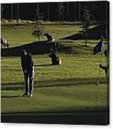 Two People Play Golf While Elk Graze Canvas Print