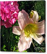 Two Pink Neighbors- Lily And Phlox Canvas Print