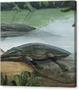 Two Prehistoric Platyoposaurus Canvas Print