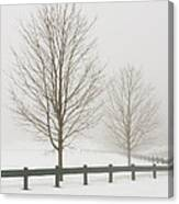 Two Trees And Fence In Winter Fog Canvas Print