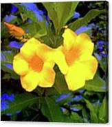 Two Yellow Flowers Canvas Print
