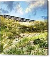 Tybee Island Dunes No.2 Canvas Print