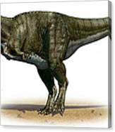 Tyrannosaurus Rex, A Prehistoric Era Canvas Print