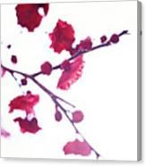 Ume Blossom Under The Sun Canvas Print