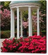 Unc Well In Spring Canvas Print