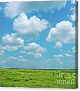 Under The Texas Sky Canvas Print