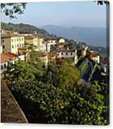 Under The Tuscan Sun Canvas Print