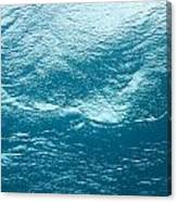 Underwater Image Canvas Print