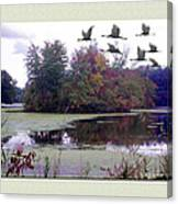 Unicorn Lake - Geese Canvas Print