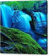 Unstoppable Flow Canvas Print