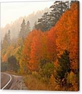 Up Around The Bend Canvas Print