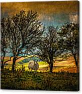 Up On The Sussex Downs In Autumn Canvas Print