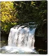 Upper Butte Creek Falls 3 Canvas Print