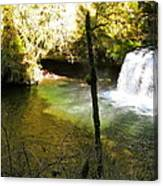 Upper Butte Creek Falls And Plunge Pool Canvas Print