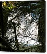 Upper Butte Creek Falls Through The Trees Canvas Print