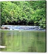 Upper Creek Reflections Canvas Print