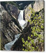 Upper Falls Of The Yellowstone River Canvas Print