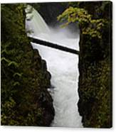 Upper Qualicum Falls 2 Canvas Print