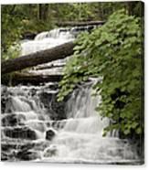 Upper Wagner Falls Canvas Print