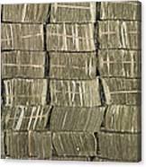 Us Cash Bundles Canvas Print