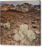 Usa, California, Death Valley, Barren Landscape Canvas Print