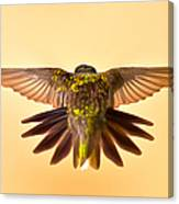 Usaf Hummingbirds Wings Canvas Print