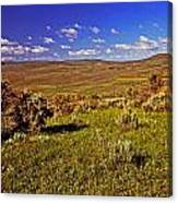 Valley At Fossil Butte Nm Canvas Print