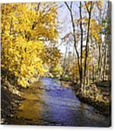 Valley Forge Creek In Autumn Canvas Print