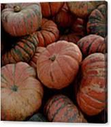 Varied Pumpkins Canvas Print