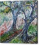 Verde Park Canvas Print