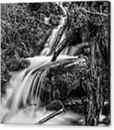 Vertical Falls Bw Canvas Print