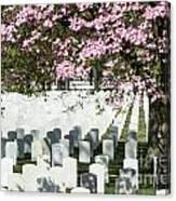 Veterans National Cemetery Canvas Print