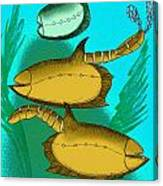 Vetulicola Species II Canvas Print