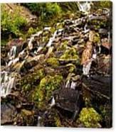 Vidae Falls Canvas Print