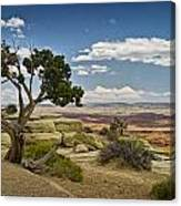 View From A Mesa Canvas Print