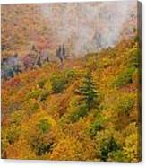 View From North Mountain Look-off Canvas Print