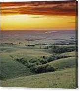 View From The Cypress Hills Canvas Print