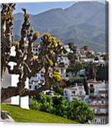 View From The Parador Nerja Canvas Print