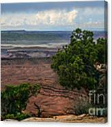 View Of Canyonland Canvas Print