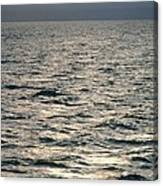 View Of Sunlit Waves On Open Water Canvas Print