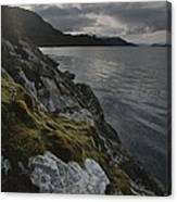 View Of The Mossy Shoreline Of Taraba Canvas Print